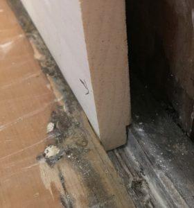 Enfield Shaker preservation dining room door trim baseboard detail