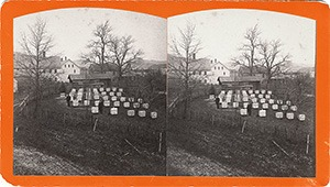 Stereoview of Enfield, NH Shaker Village - Bee hives at South Family.