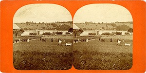Stereoview of Enfield, NH Shaker Village - Looking northeast to garden of seed onions.