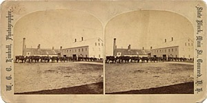 Stereoview of Canterbury, NH Shaker Village - Ox Team.